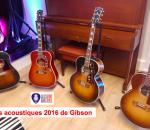 VignetteAcoustique2016Gibson