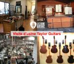 Visite vidéo de l'usine Taylor Guitars de Californie à El Cajon