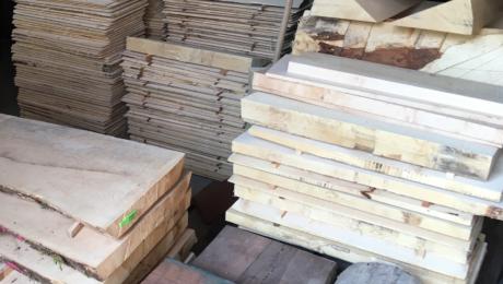 Visite de la réserve de bois du luthier Franck Cheval 1/2