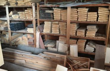 Visite de la réserve de bois du luthier Franck Cheval 2/2